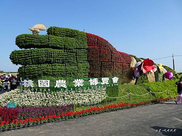 桃園農業博覽會124.jpg