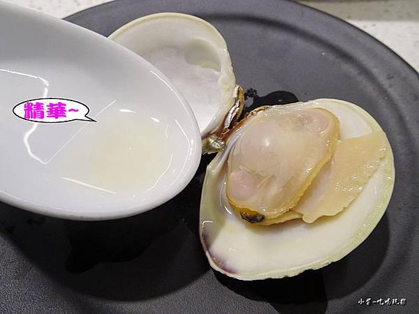 牛奶貝 (7)26.jpg