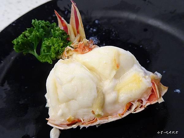 宏都拉斯龍蝦 (7)8.jpg