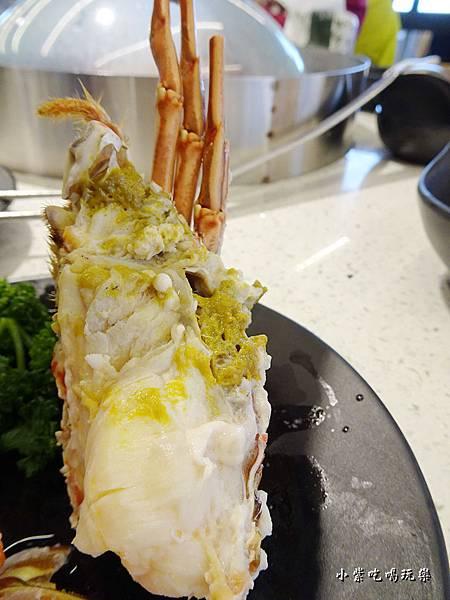 宏都拉斯龍蝦 (9)2.jpg