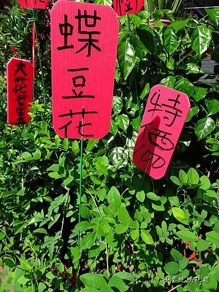 虎頭山金燕豆花1.jpg