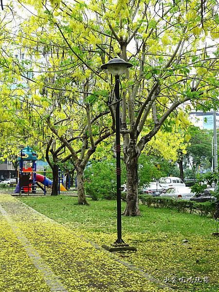 梅川東路一段-阿勃勒黃金雨20.jpg