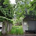 台中文學館30.jpg