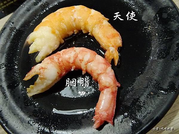 蝦 (2)34.jpg