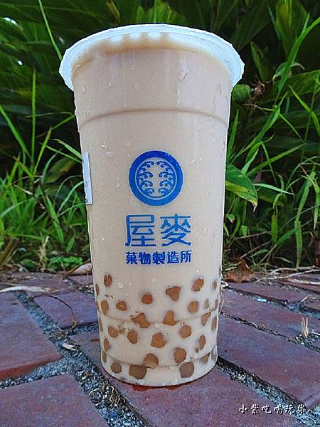 紅茶嘉明+白玉 (4)15.jpg
