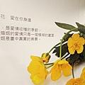 DSC0119017.jpg