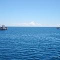 龜山島賞鯨2合15.jpg