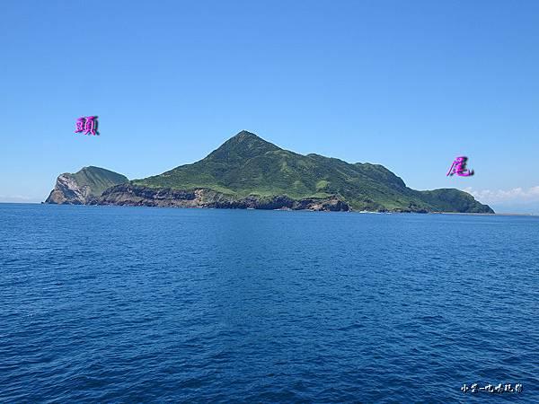 龜山島賞鯨2合111.jpg