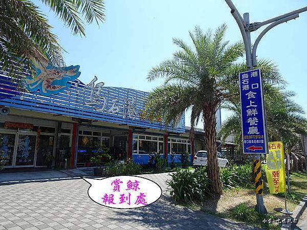 龜山島賞鯨2合132.jpg