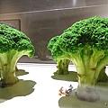 田中達也-微型展33.jpg