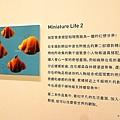 田中達也-微型展55.jpg