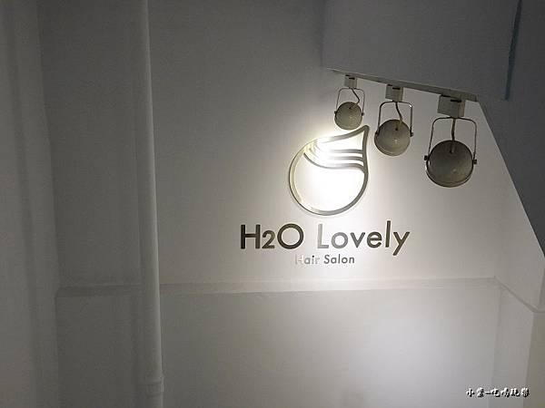 H2O Lovely 美髮沙龍 (46).jpg