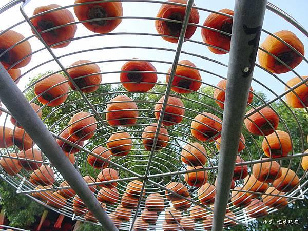 金漢柿餅教育農園7.jpg