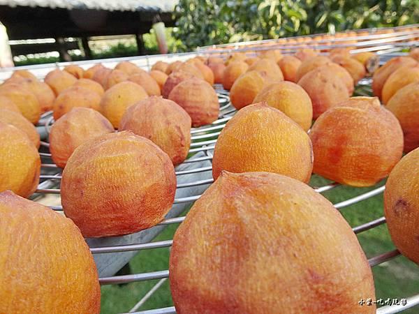 金漢柿餅教育農園8.jpg