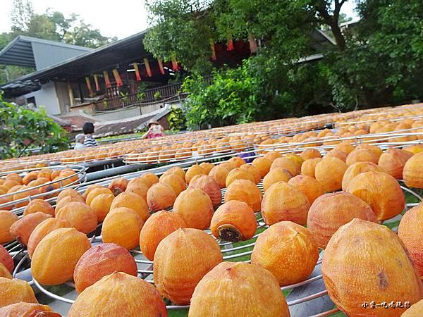 金漢柿餅教育農園9.jpg