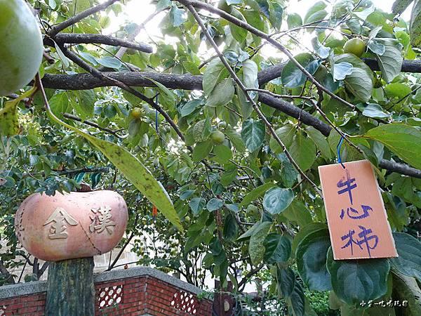 金漢柿餅教育農園28.jpg