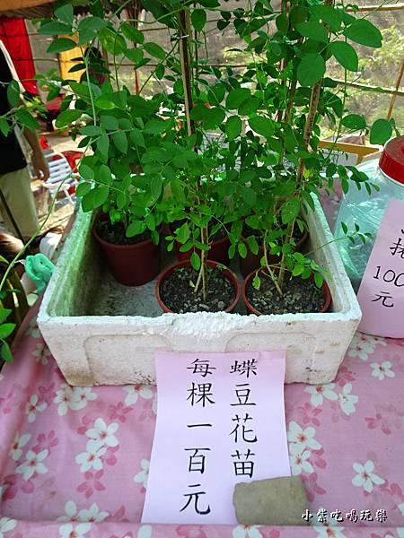 味衛佳柿餅61.jpg