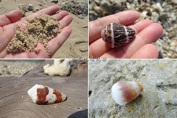 美人洞後方沙灘貝殼.jpg
