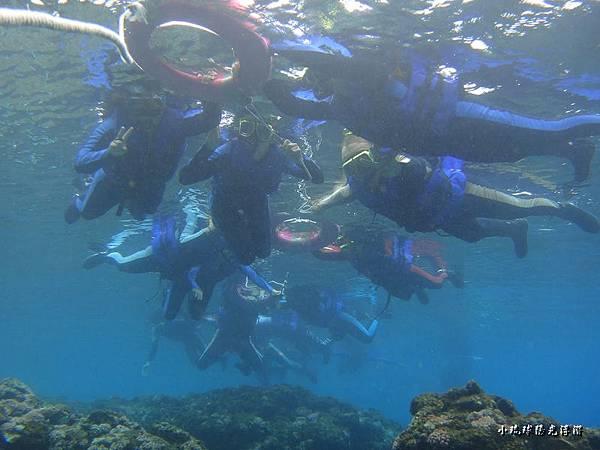 海底世界156.jpg