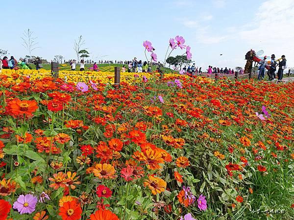 台中國際花毯節5.jpg