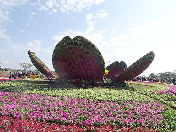 台中國際花毯節16.jpg