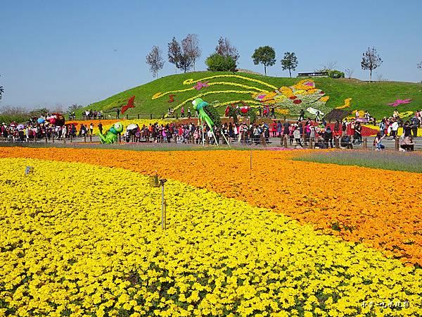 台中國際花毯節21.jpg