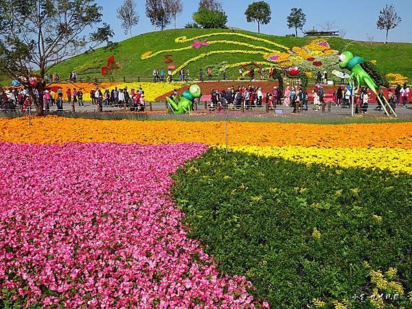 台中國際花毯節23.jpg