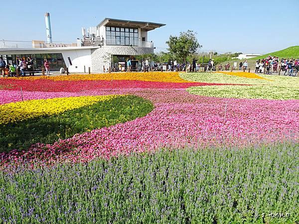 台中國際花毯節25.jpg