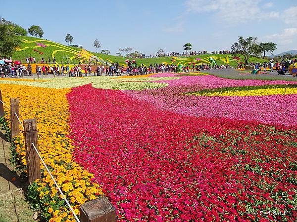 台中國際花毯節27.jpg