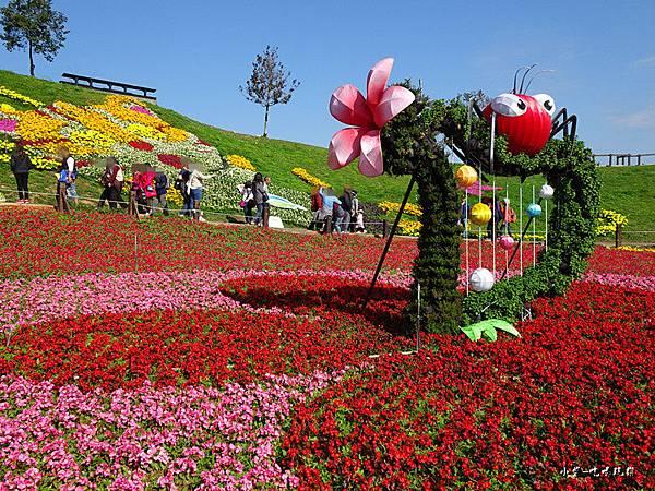 台中國際花毯節29.jpg