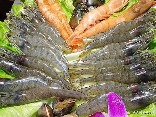 白鑽蝦 (2)66.jpg