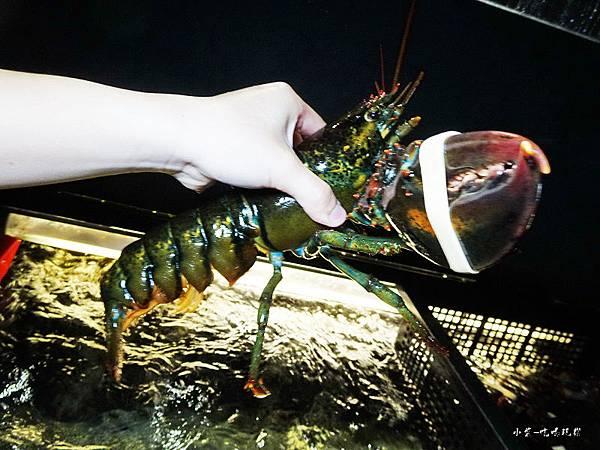 波士頂龍蝦 (1)52.jpg