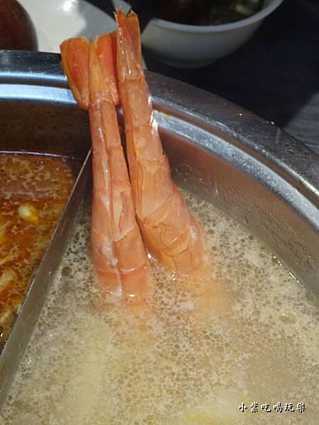 圓味-天使紅蝦 (4)0.jpg