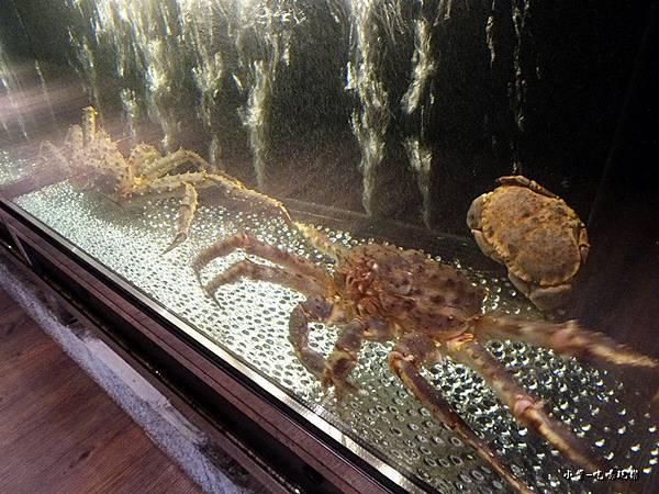 鱈場蟹 (2)72.jpg