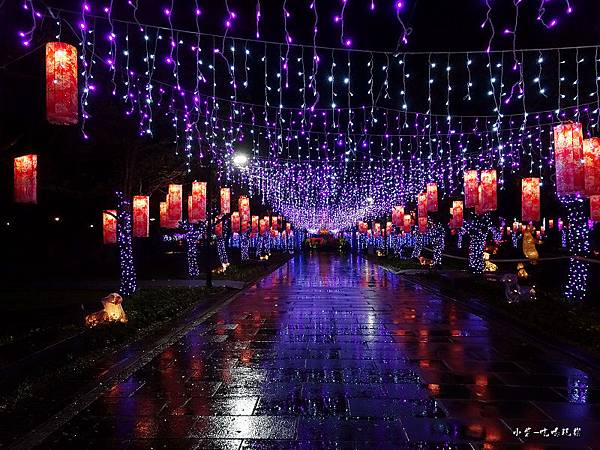 宜蘭賞花燈-員山公園15.jpg