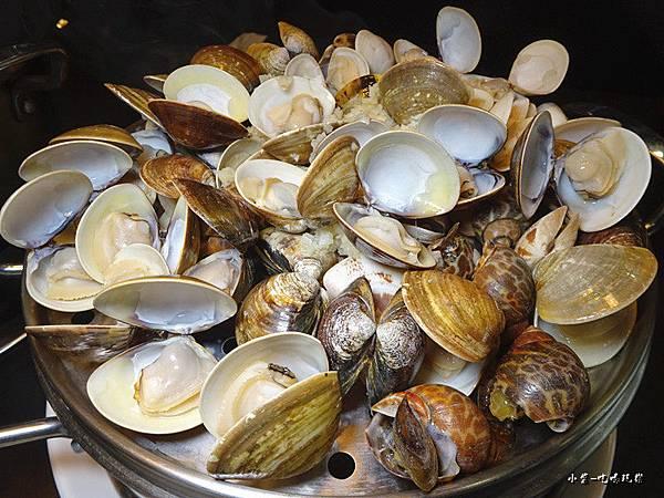 綜合貝類 (1)47.jpg