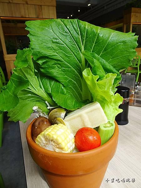 盆栽菜盆 (2)2.jpg