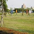 梧棲頂魚寮公園 (38).jpg