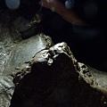 小琉球鳥鬼洞10.jpg