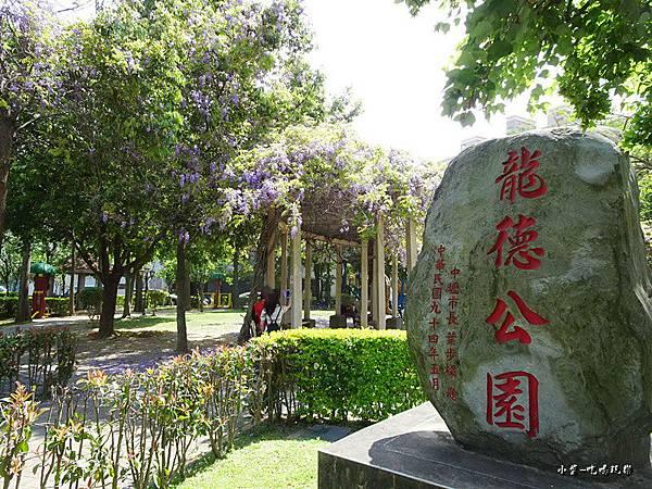 龍德公園紫藤花季1.jpg