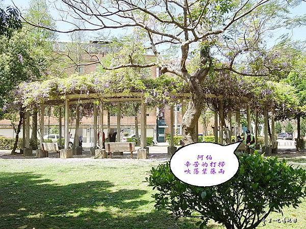 龍德公園紫藤花季15.jpg