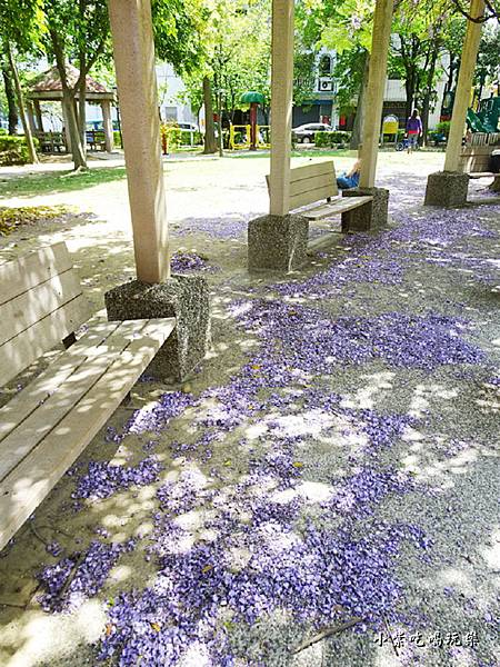 龍德公園紫藤花季21.jpg