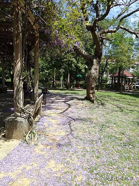 龍德公園紫藤花季25.jpg