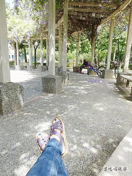 龍德公園紫藤花季28.jpg
