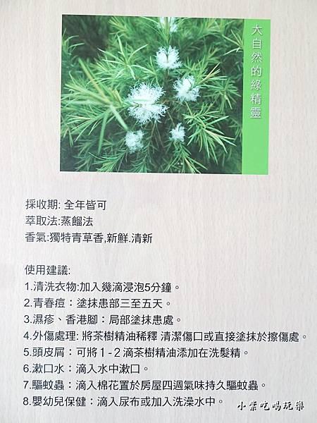 葛瑞絲香草田69.jpg