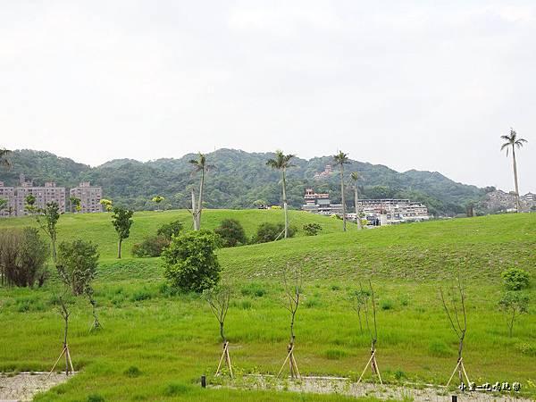 三鶯陶花源 (19).jpg