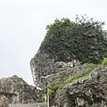 小琉球厚石群礁 (5)13.jpg