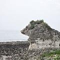 小琉球厚石群礁 (7)15.jpg