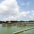 天鵝湖水上公園 (8).jpg