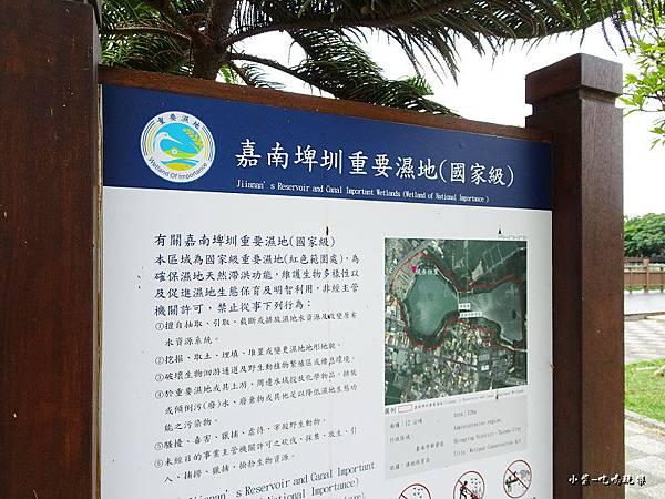 天鵝湖水上公園 (14).jpg